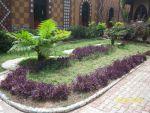 Essence Gardens